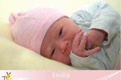 Emilia-3-1-16-3430-51