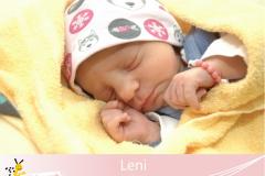 Leni-25-20-20-2600-50