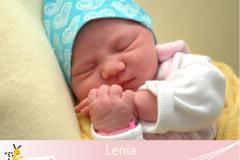 Lenia
