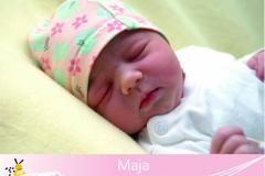 Maja-23-14-03-3845-53