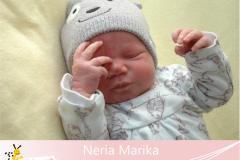 Neria-Marika