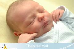 Theo-Helmut