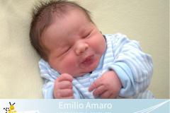 Emilio-Amaro