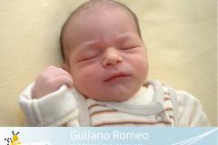 Guliano-Romeo